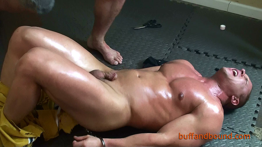 Free Gay Porn Picture Galleries