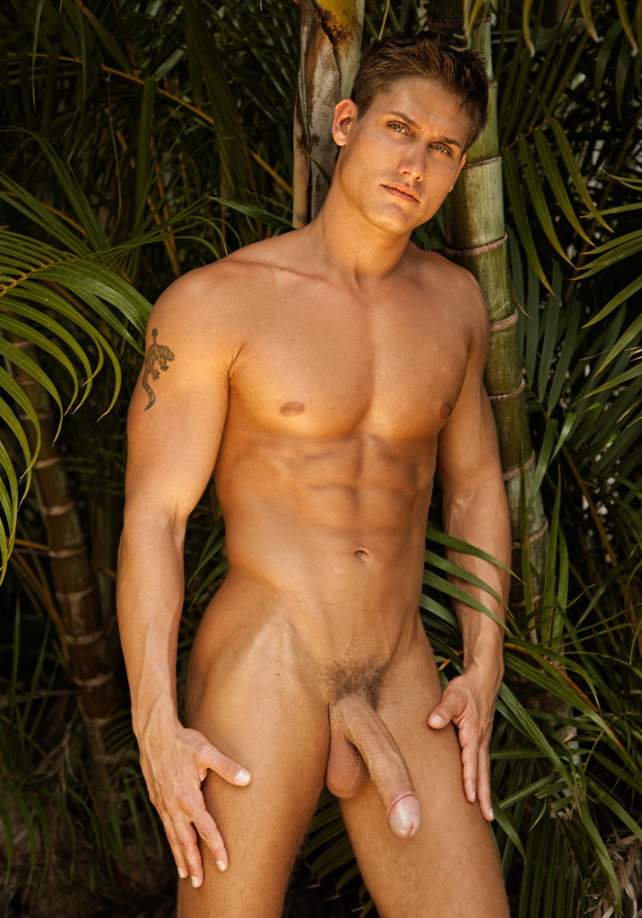 from Alexis beautiful gay muscular man