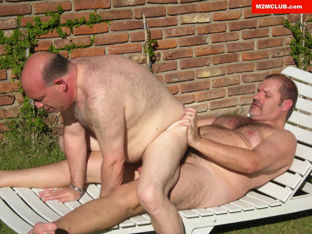 gay bear club