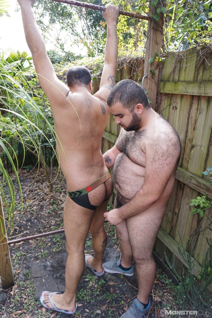 Chubby cubs bare backing