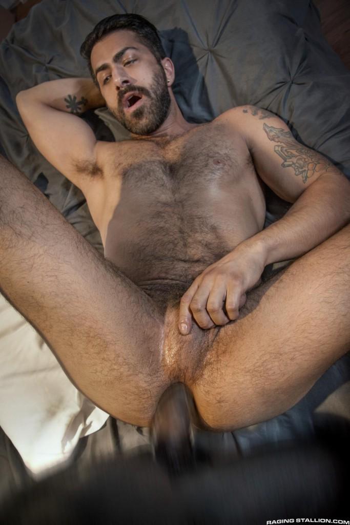 Adam Ramzi Gay porno po r n