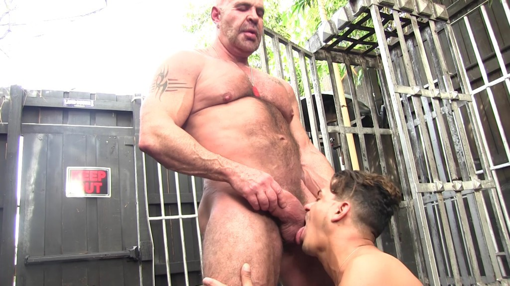 daddy rogue and cesar xes at victor cody xxx gaydemon