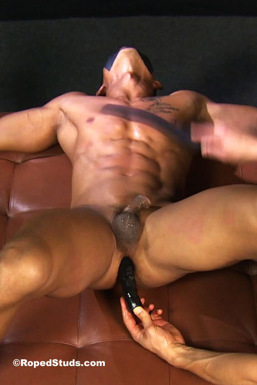Muscular Interracial Studs Fucking