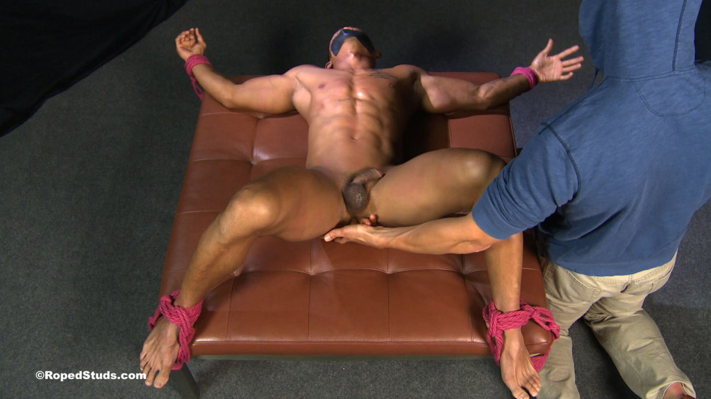 gay tied and fucked