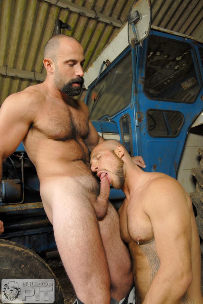 Bodybuilder Gay Porn Pics