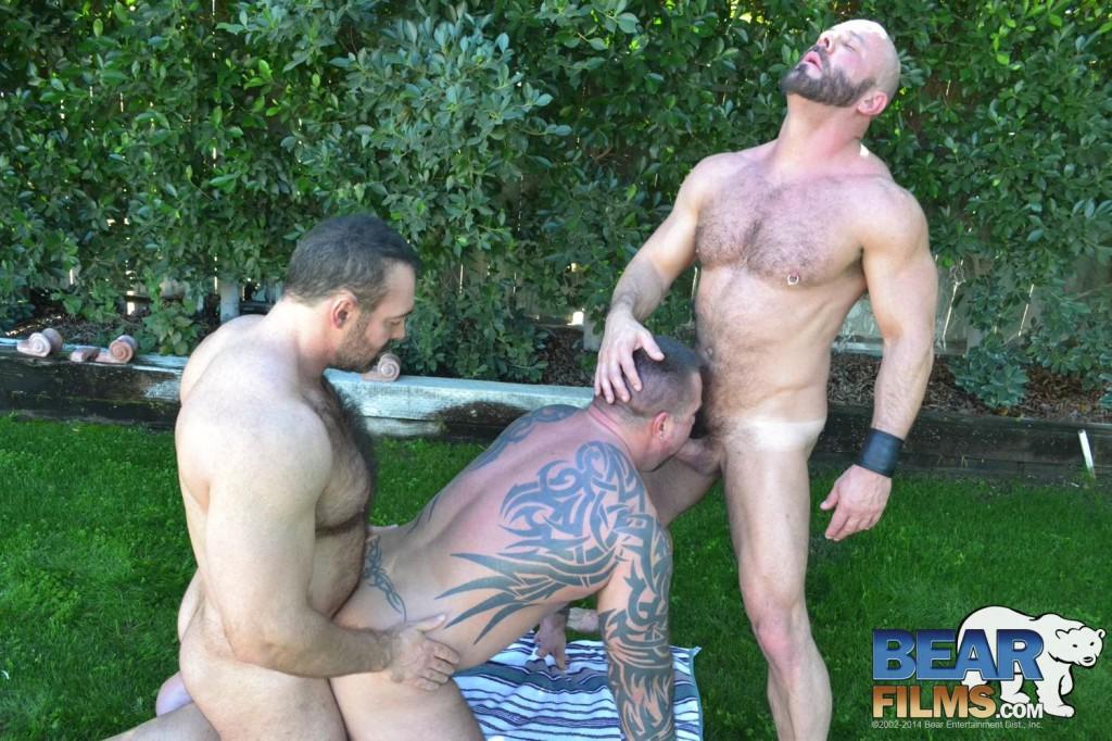 Gay Bear Sex In Palm Springs