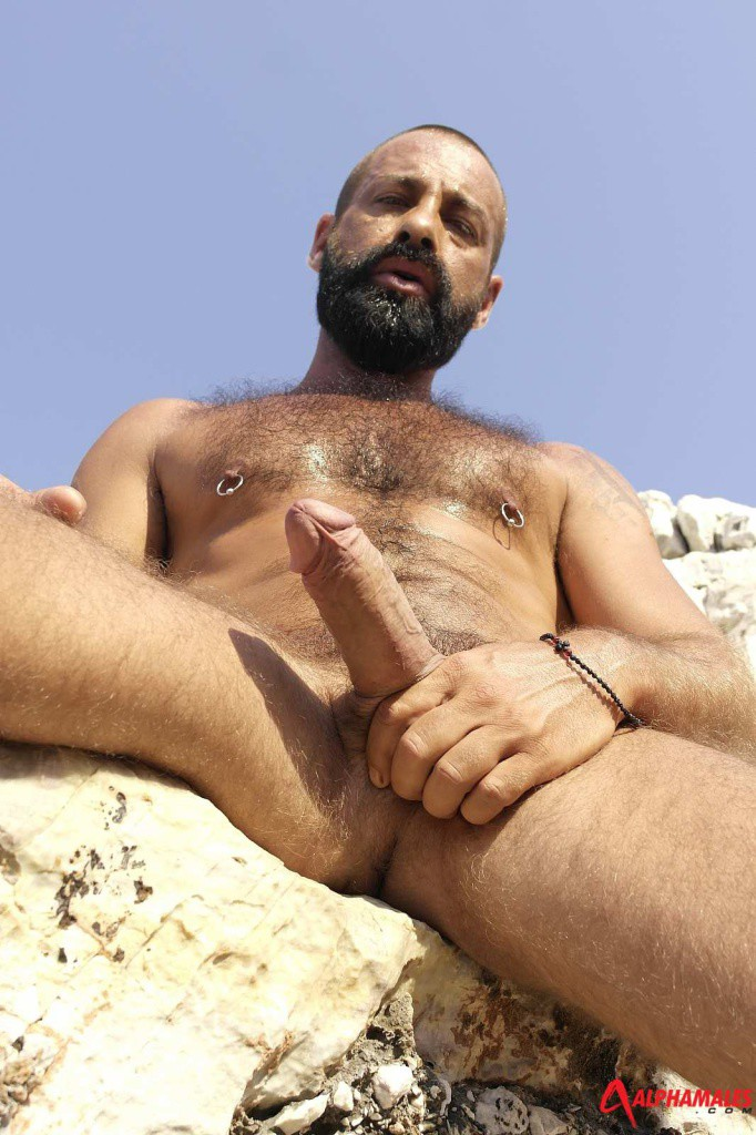 Hairy Muscle Gay Porn Videos for Free  xHamster