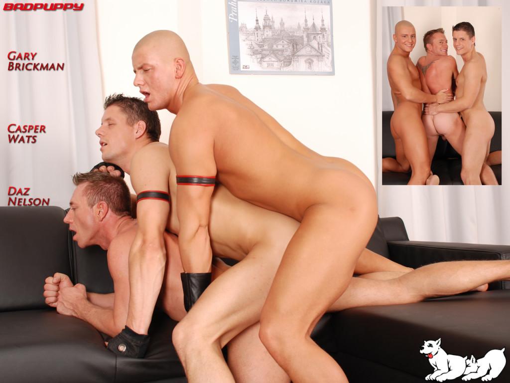 Große Beute Ebenholz-Porno-Röhren