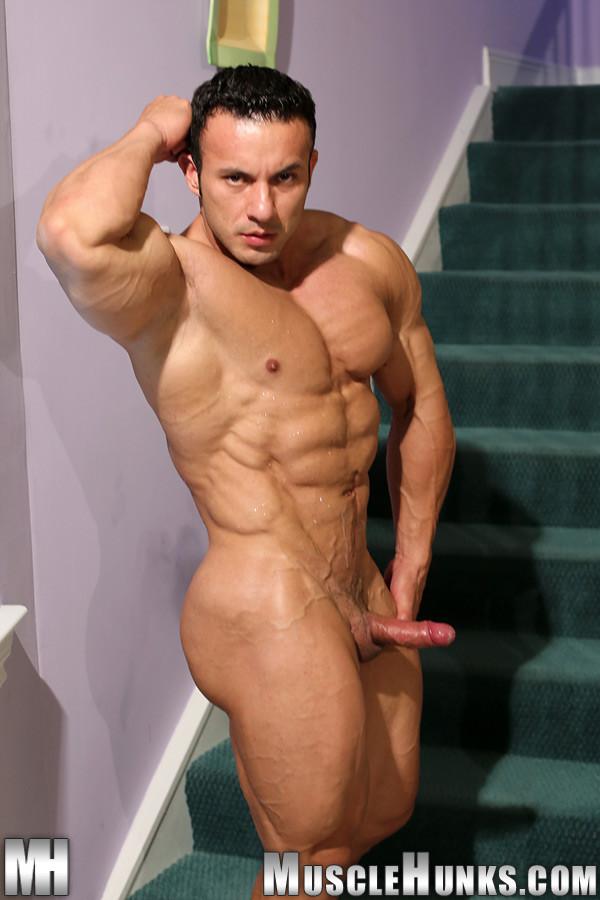 Male muscle video