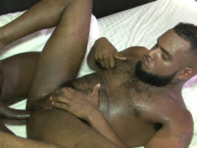 Free gay dvds and videos-6253