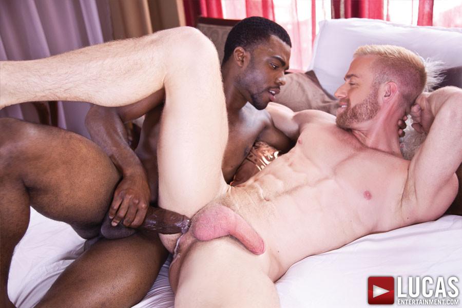 dark knight interracial sex