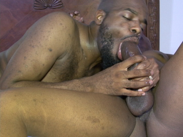 gay beef tube