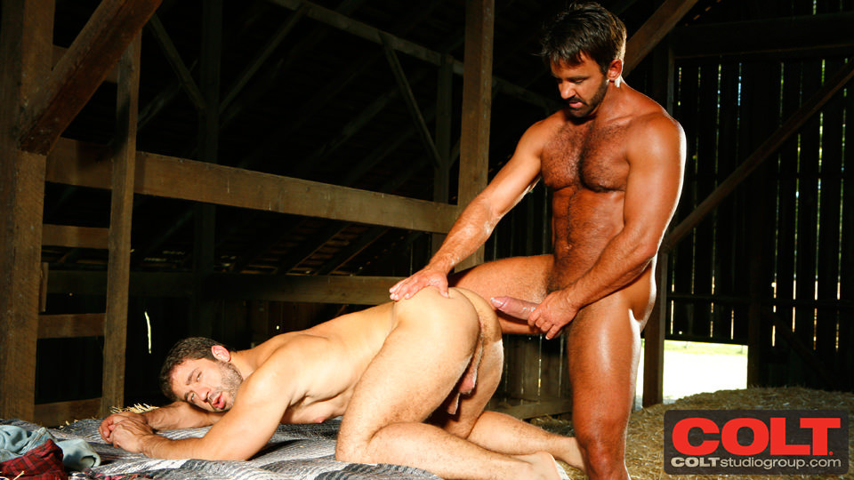 Tom chase gay videos