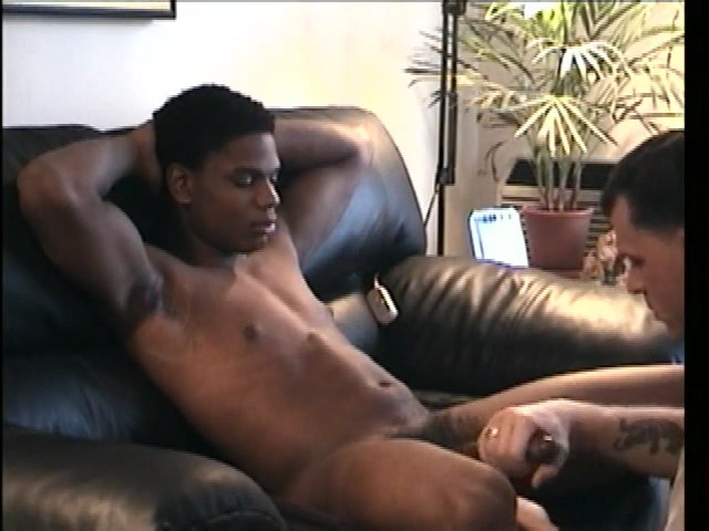 from Alvin black cock gay taste