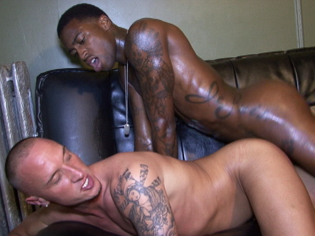 Austin Dallas And Hotrod Fucking Bareback - Gaydemon-9120