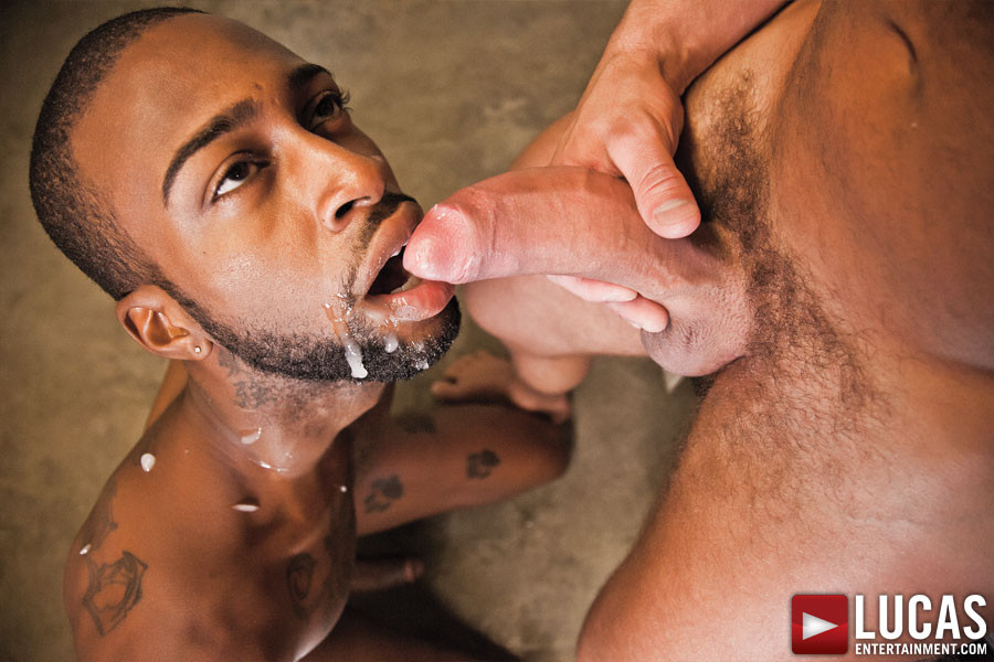 hot rod gay porn videoer