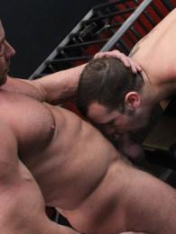 Scene Image 10