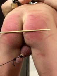 free online lesbian stripping