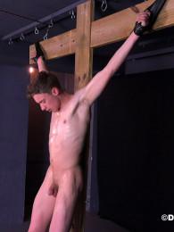 Scene Image 7