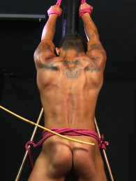 Video: asian sub jay at roped studs